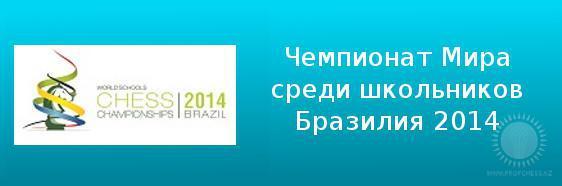 Чемпионат Мира среди школьников 2014 года