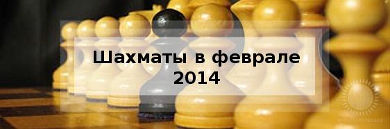 Шахматы в феврале